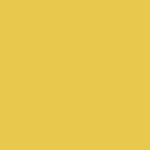Tulsa Spider Control