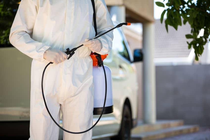 Pest Control in Tulsa